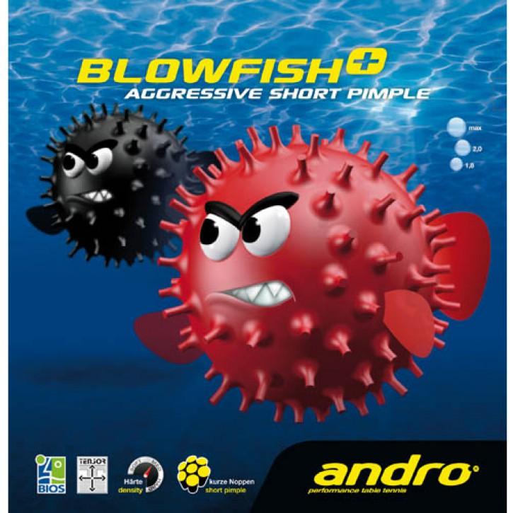 Andro Belag Blowfish plus