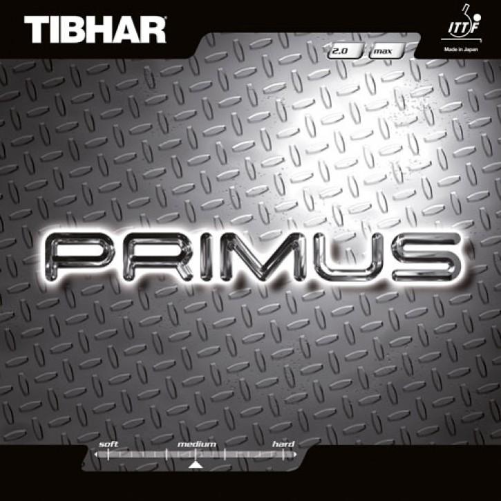 Tibhar Belag Primus