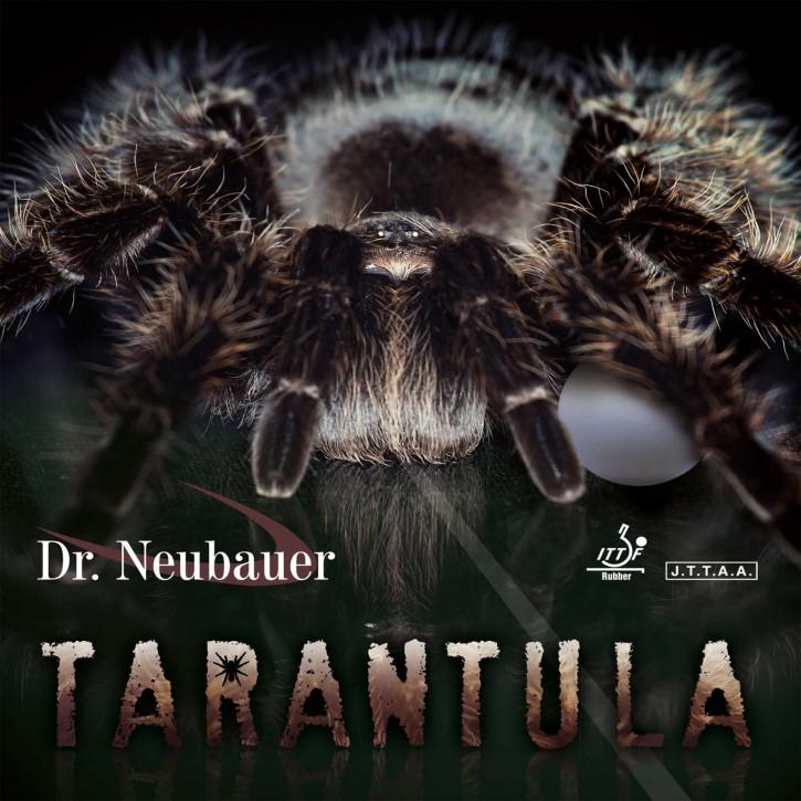 Dr. Neubauer Belag Tarantula
